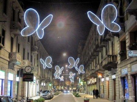 Светящиеся бабочки Милана