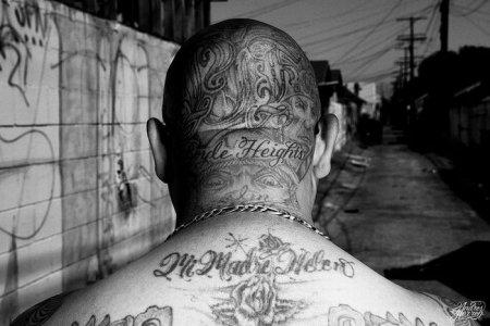 L.A. Cultura