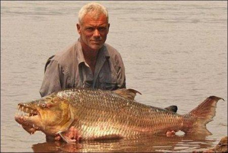 Опасная пресноводная рыба в мире