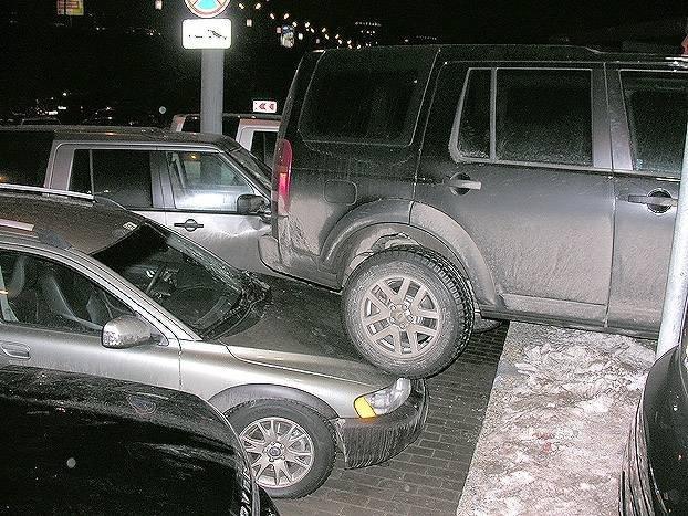 Водительницу подвёл парктоник