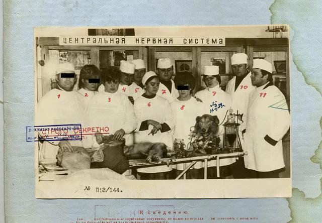 Советский биоробот