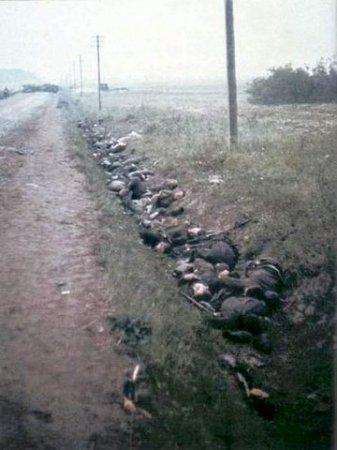 """Немец """"врать не будет"""". КВ. Расейная. июнь 1941 года"""