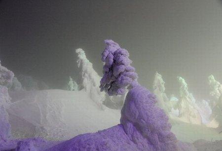 Очень снежный снег в Японии