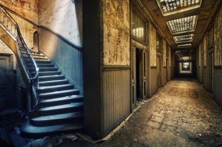 Новые работы фотографа Sven Fennema
