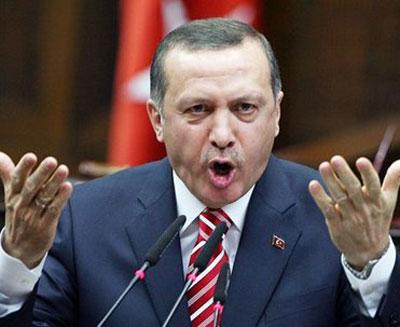 Эрдоган призвал немецких турок избегать ассимиляции