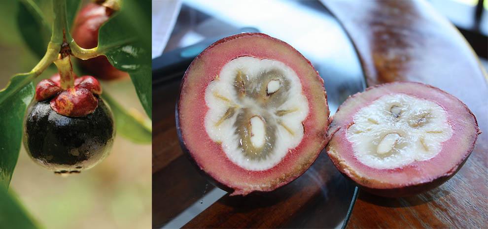 Порно с экзотические фрукты
