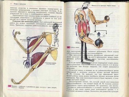 Народный креатив. Разрисовка учебников