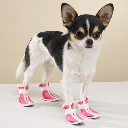 Коты в сапогах и собаки в кроссовках