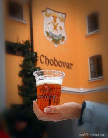 Чехия - пивной рай