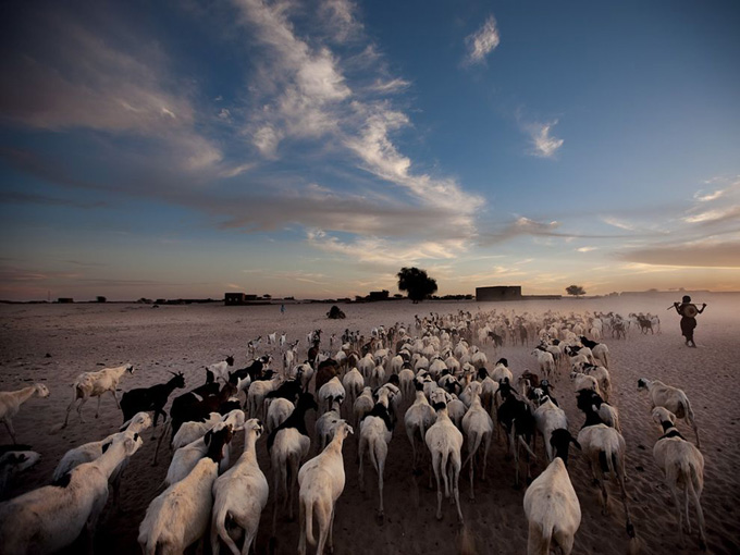National Geographic: Фотографии недели
