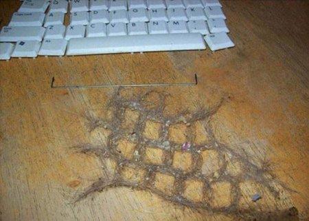 Что хранит в себе клавиатура