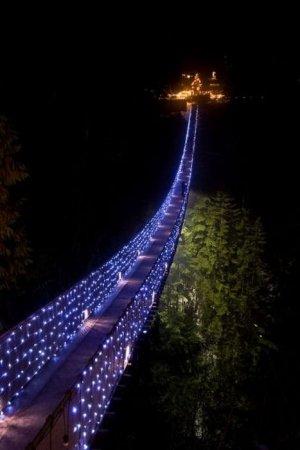 Удивительный подвесной мост