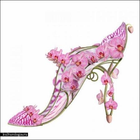 Туфельки для настоящих фей от Michel Tcherevkoff