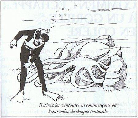 Как спастись от гигантского осьминога