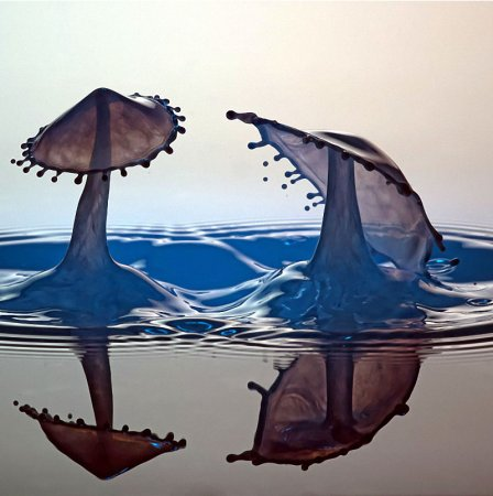 Брызги и капли на снимках Маркуса Ройгельса