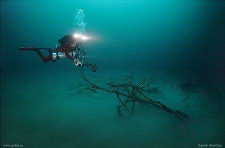 Подводные пещеры... Фотограф Anatoly Beloshchin