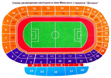 Сегодня в продажу поступили билеты на матч Беларусь — Франция
