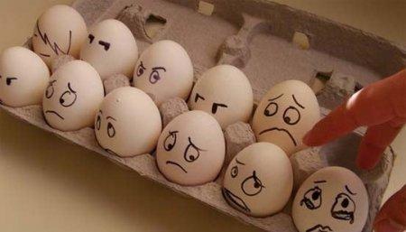 К празднику Пасхи. Из жизни яиц