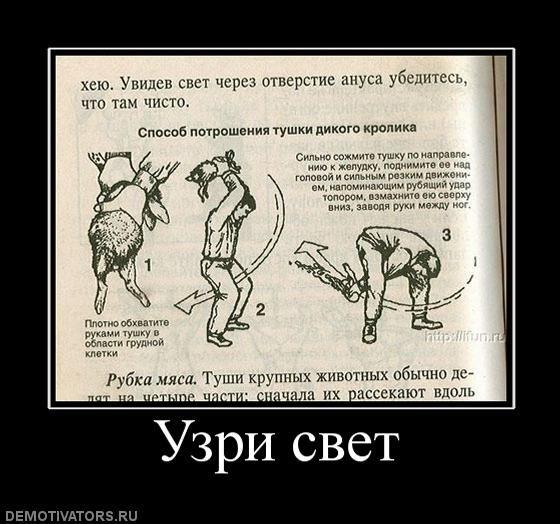 Демотиваторы - 151