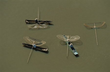 Признанный мастер аэросъемки Yann Arthus-Bertrand