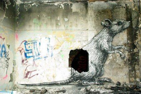 Граффити в Варшаве от ROA