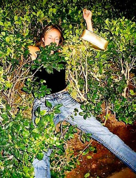 Он лежит в кустах — 3