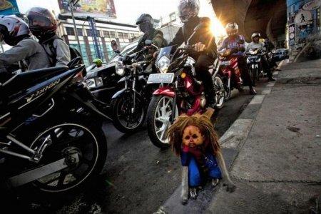 Обезьянки в Индонезии