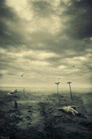 Фотоарт Przemyslaw Stradczuk