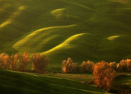 Зеленые поля в Европе