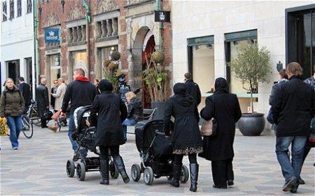 Датчане нашли способ избавиться от мигрантов