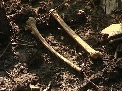 Под Воронежем нашли новые расстрельные ямы