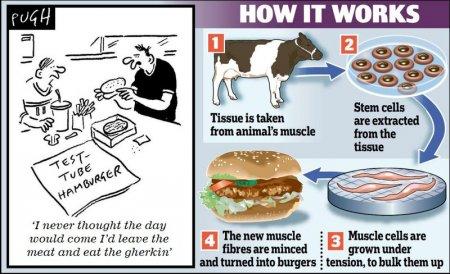 Инвитро-мясо