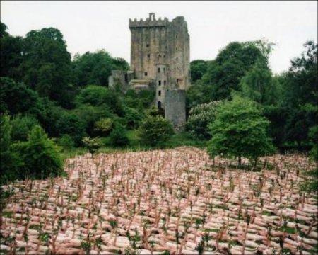 Спенсер Туник раздел 800 человек у стен замка Гаасбек, Брюссель. ФОТО