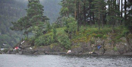 Норвежская полиция заявила о 80 убитых на острове Утойя