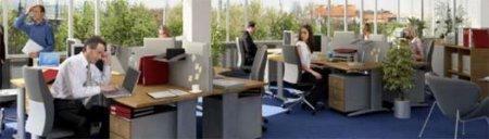 Работать в опен-офисах вредно для мозга!