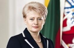 Президент Литвы упрекнула белорусскую оппозицию в алчности