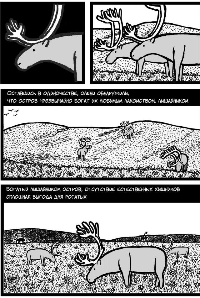 Про оленей
