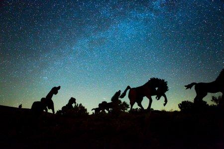 Озвезденительные фотографии со звездами