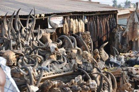 Магазин магических принадлежностей в Того