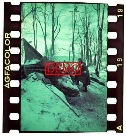 Горные стрелки на Кавказе. Уникальные цветные кадры