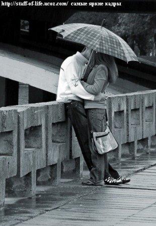 Люди живут чувствами