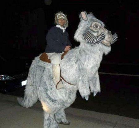 Очередная партия креативных костюмов на Хеллоуин