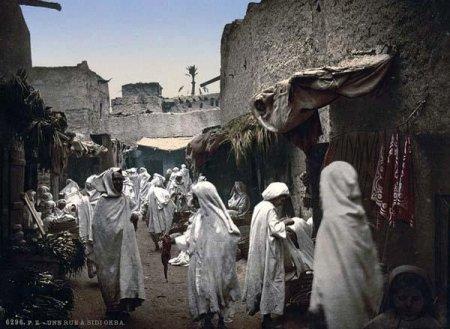 100 фактов об Алжире