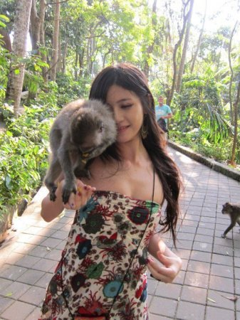 Нападение обезьянки-извращенца