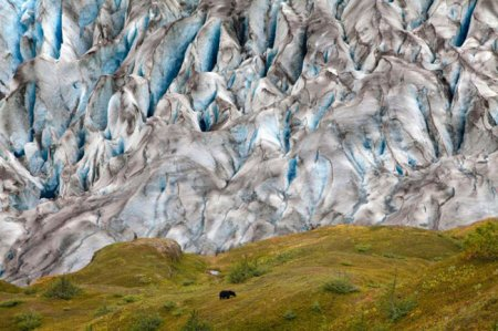 ���������� � �������� 2011 National Geographic Photography Contest