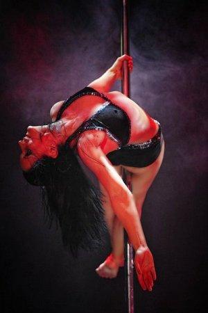 Экскурсия по Владивостоку:чемпионат по танцам на шесте.