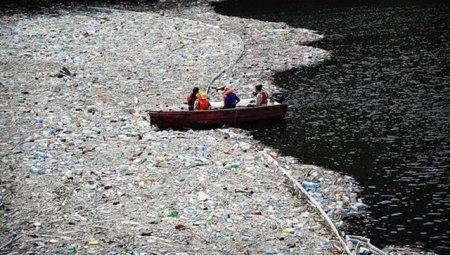 Великий мусорный остров