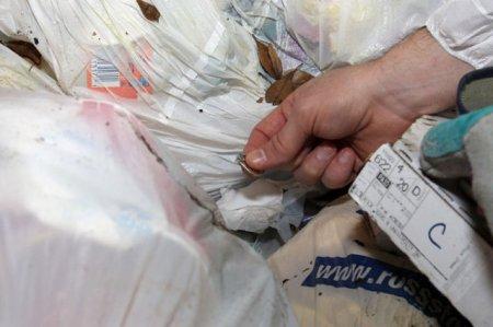 А вы бы полезли в мусорку?