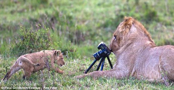 А фотограф где?