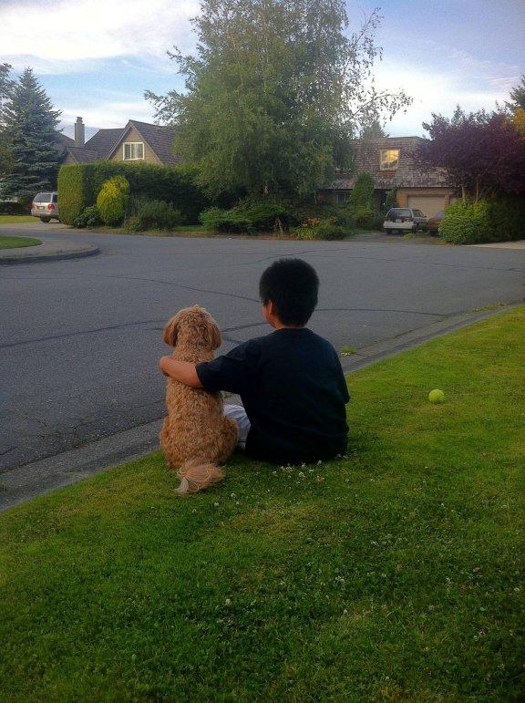 Забавные животные - лучшие фото 2011